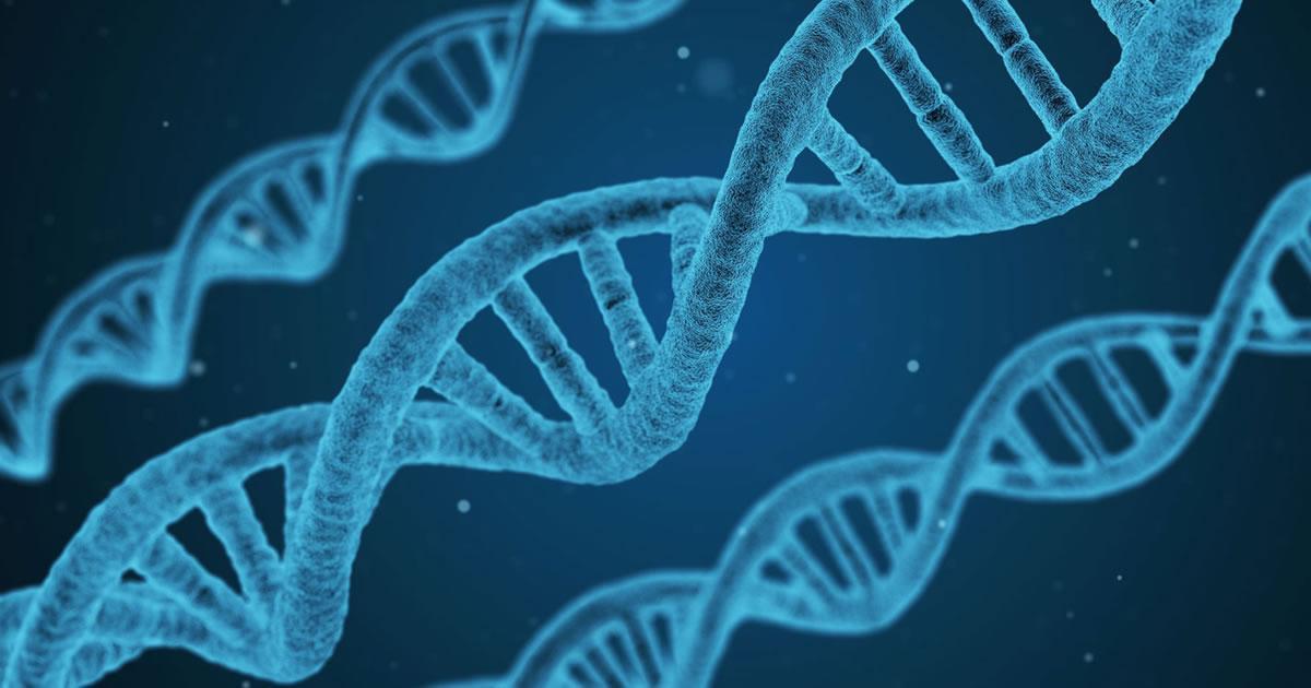 [Você já ouviu falar em Epigenética?]